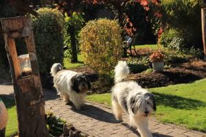 Easy und Hobbit Gartenweg